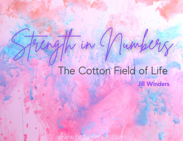 The Cotton Fields ofLife